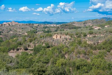 SIENA, TUSCANY: FARMHOUSE WITH POOL AND PANORAMIC VIEW FOR SALE, COUNTRY HOUSE, VILLA, LAND, OLIVE GROVE, COUNTRYSIDE, SIENESE HILLS
