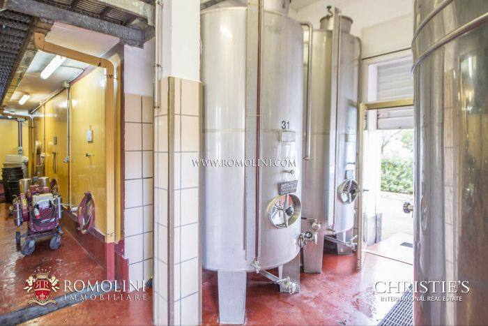 WINERY FOR SALE FRASCATI VINO