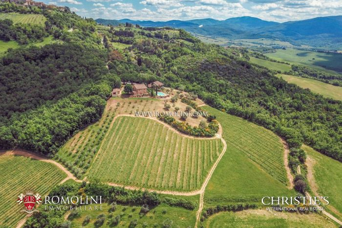 STATE-OF-THE-ART ORGANIC WINERY FOR SALE IN SIENA, TUSCANY