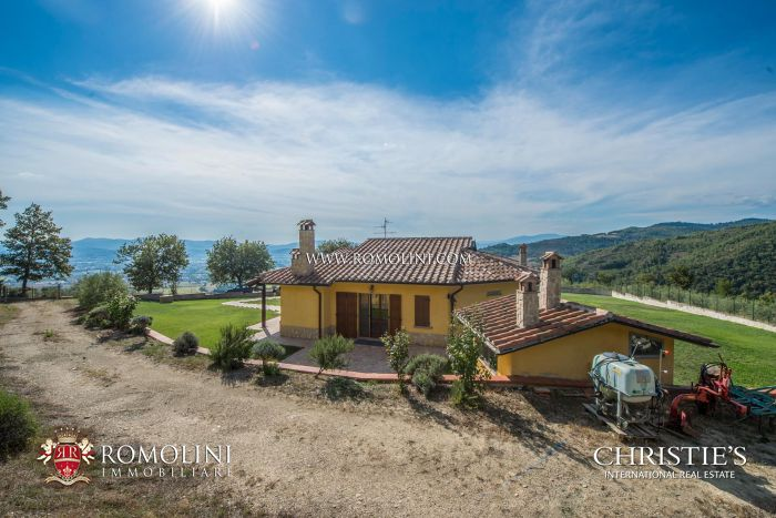 VILLA WITH 2,000 OLIVE TREES FOR SALE, CITTÀ DI CASTELLO, UMBRIA