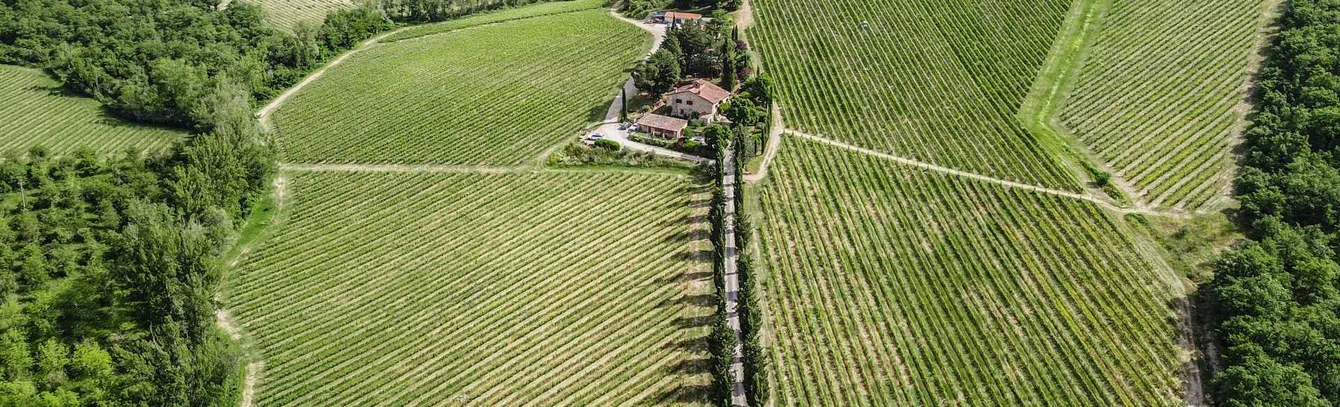 A beautiful wine estate for sale in Chianti Classico, not far from Gaiole